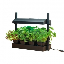 Garland Micro Grow Light Garden  - 11 W