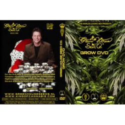 Grow-DVD Greenhouse Seeds